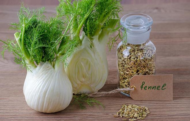 fennel inmarathi