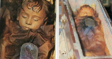 dead bodies inmarathi5