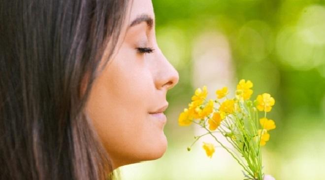 human nose smelling inmarathi