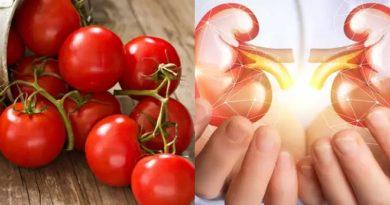 tomato kidney stone inmarathi