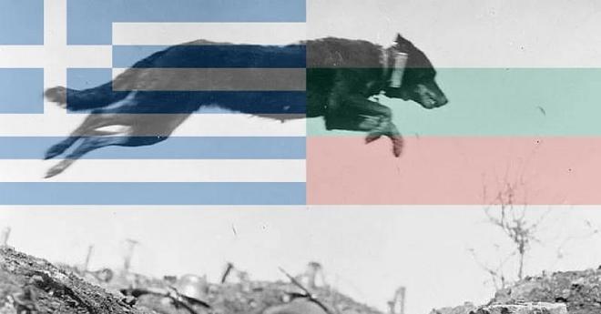 war because of dog inmarathi