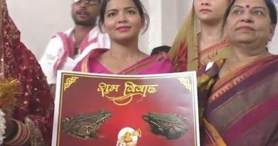 Frog-wedding Feature InMarathi