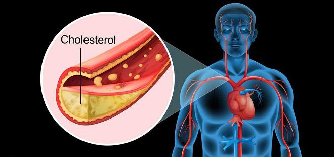 cholesterol inmarathi 2