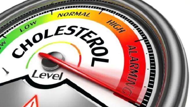 cholesterol inmarathi