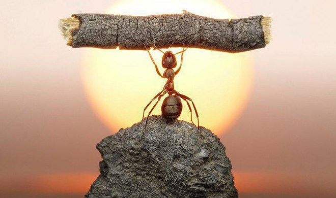 know strength inmarathi