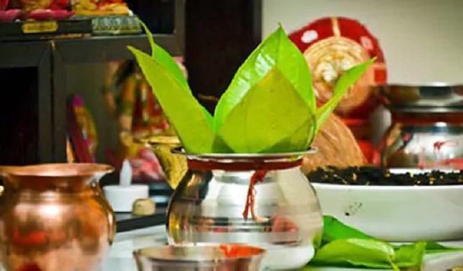 betel leaf inmarathi4