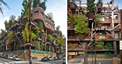 urban tree house 2 inmarathi