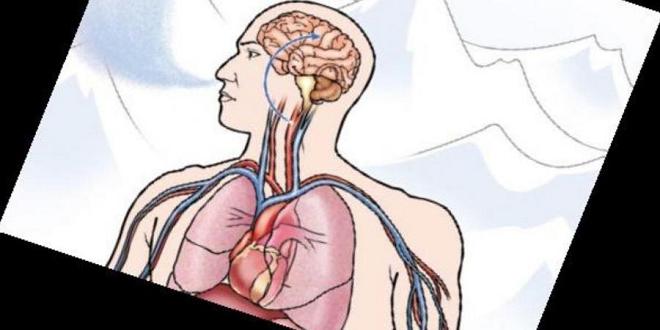 hypoxia inmarathi