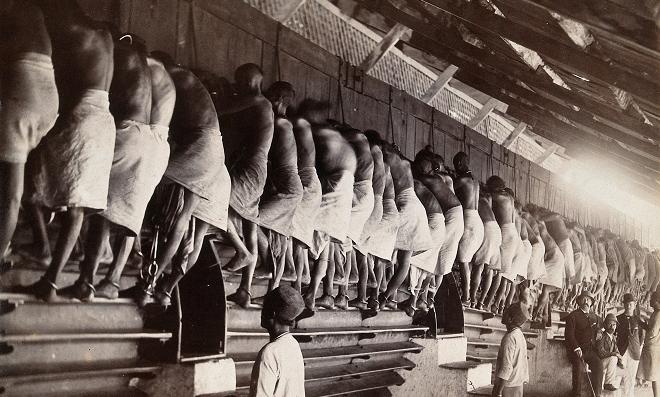 treadmill old inmarathi