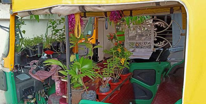 green auto inmarathi