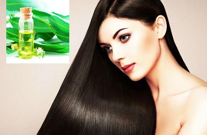 nilgiri for hair inmarathi
