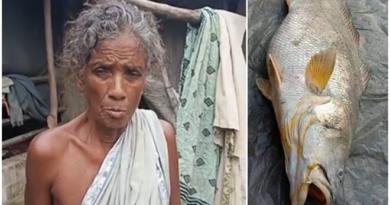 granny inmarathi