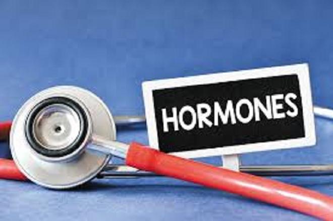 hormones inmarathi