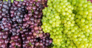 Green black grapes IM