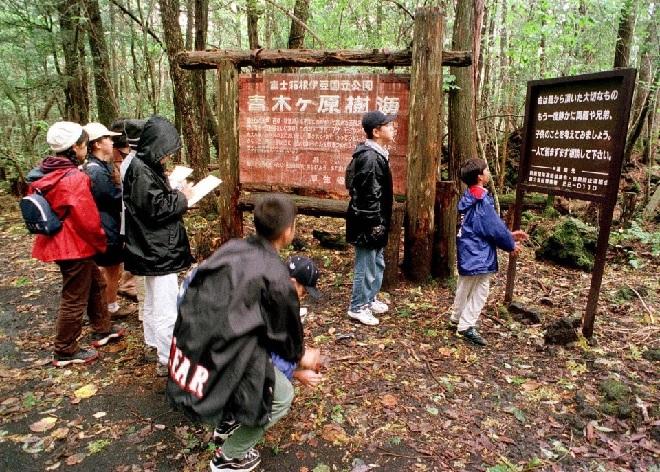 forest visit inmarathi