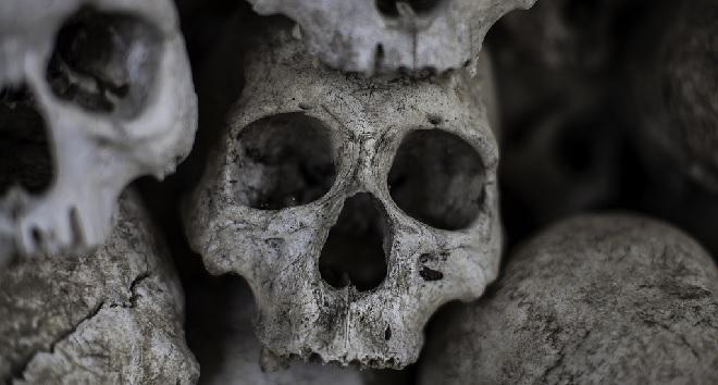 human skull inmarathi