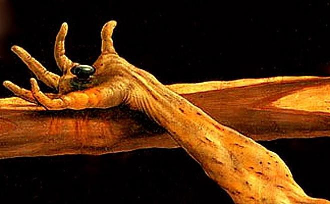 nail inamrathi
