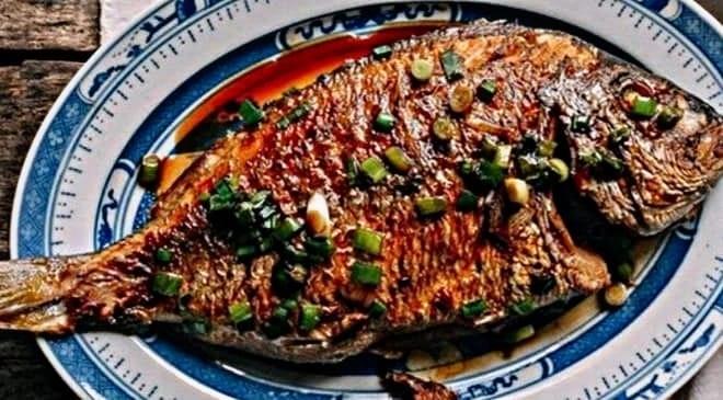 fish 4 inmarathi