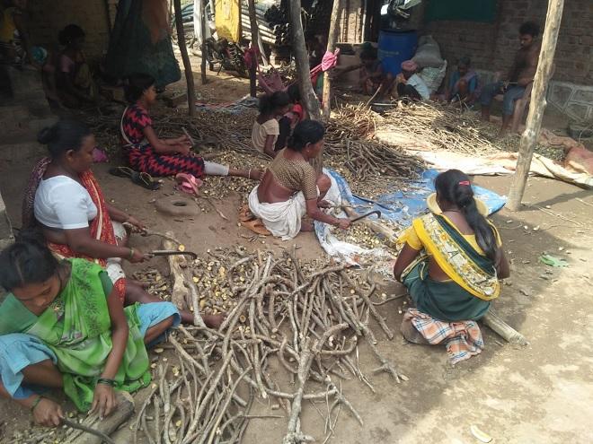 adivasi inmarathi 2