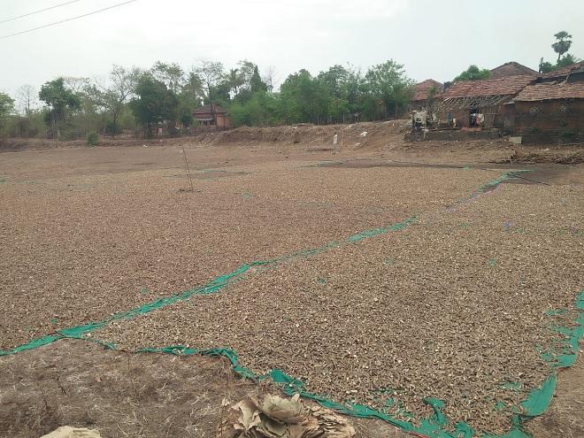 adivasi inmarathi 6