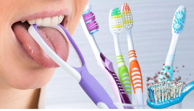 toothbrush 6 in marathi