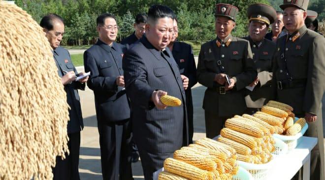north korea featured 2 inmarathi