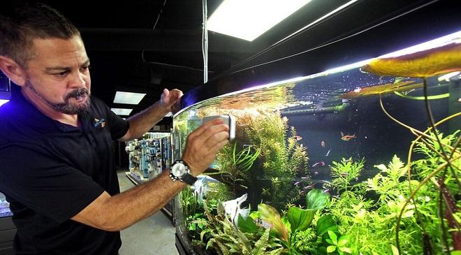 Fish tank inMarathi