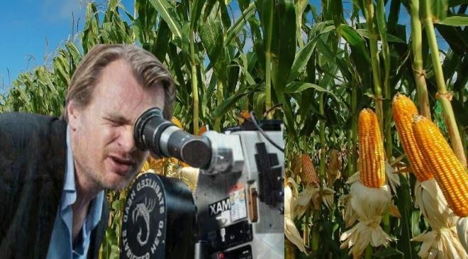 christopher nolan corn farming inmarathi