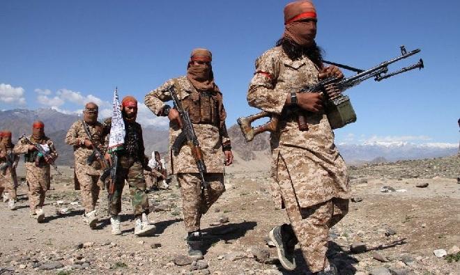 talibanis inmarathi