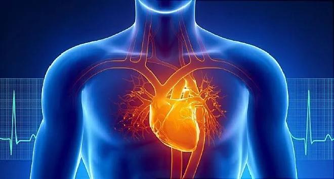 heart attack inmarathi
