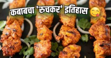 kabab history inmarathi