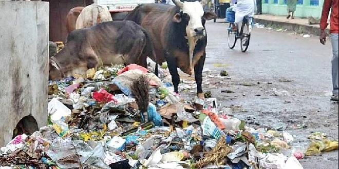 waste on road inmarathi