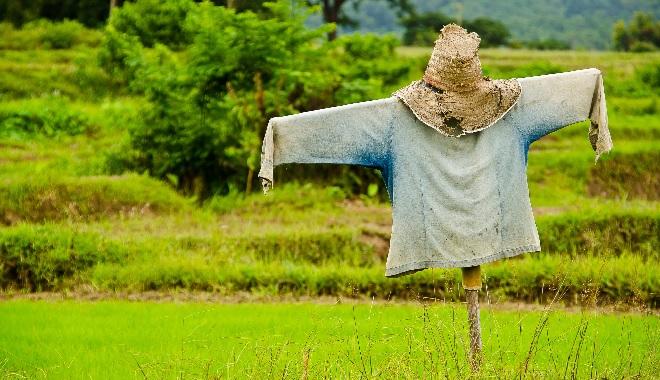 scarecrow inmarathi