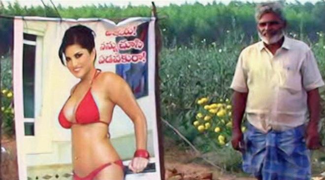 sunny leone poster and farmer inmarathi